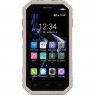 Смартфон TWOE E450R DualSim Gray (708744071040)
