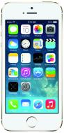 Смартфон Apple iPhone 5s 64Gb Gold (ME440UA/A)