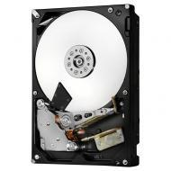 Жесткий диск 6TB HGST Deskstar NAS (H3IKNAS600012872SWW/0S04007)