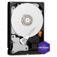 Жесткий диск 10TB WD Purple (WD100PURZ)