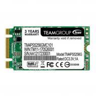 SSD накопитель 256 Гб Team 2242 (TM4PS5256GMC101)