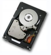 Винчестер для сервера HDD SAS IBM SlimHDD (42D0632)