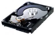 Жесткий диск Samsung Spinpoint F3EG HD503HI