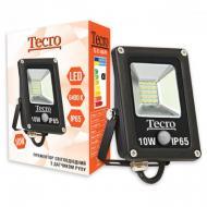 Прожектор Tecro TL-FL-10B-PR