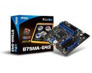 ����������� ����� MSI B75MA-G43