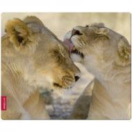 Игровая поверхность SPEEDLINK Silk Mousepad Lion (SL-6242-LION)