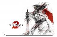 ������� ����������� SteelSeries QcK Guild Wars2 Logan edition (67251)