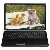 Ноутбук Asus K50ID (K50ID-T667SFGRAW) Black 15,6