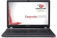 Ноутбук Acer Packard Bell ENTG71BM-C8N0 (NX.C3UEU.004) Black 15,6