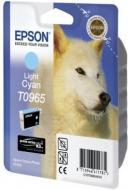�������� Epson (C13T09654010) (Stylus Photo R2880) light cyan
