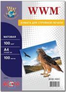 ������ ��� ������������ WWM (M100.100)
