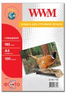 Бумага для фотопринтера WWM (G180.100)
