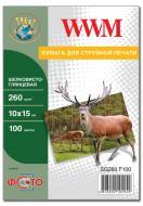 Бумага для фотопринтера WWM (SG260.F100)