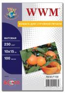Бумага для фотопринтера WWM (M230.F100)
