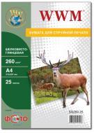 Бумага для фотопринтера WWM (SG260.A4.25)