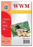 Бумага для фотопринтера WWM (G225.F100)