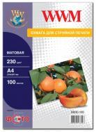 Бумага для фотопринтера WWM (M230.100)