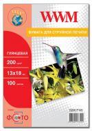 ������ ��� ������������ WWM (G200.P100)