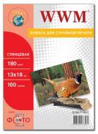 Бумага для фотопринтера WWM (G180.P100/C)