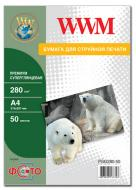 Бумага для фотопринтера WWM (PSG280.50)