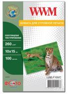 ������ ��� ������������ WWM (L260.F100/C)