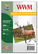 Бумага для фотопринтера WWM (SG260.F20)