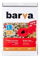 Пленка BARVA A4 (IF-NVL10-T01)