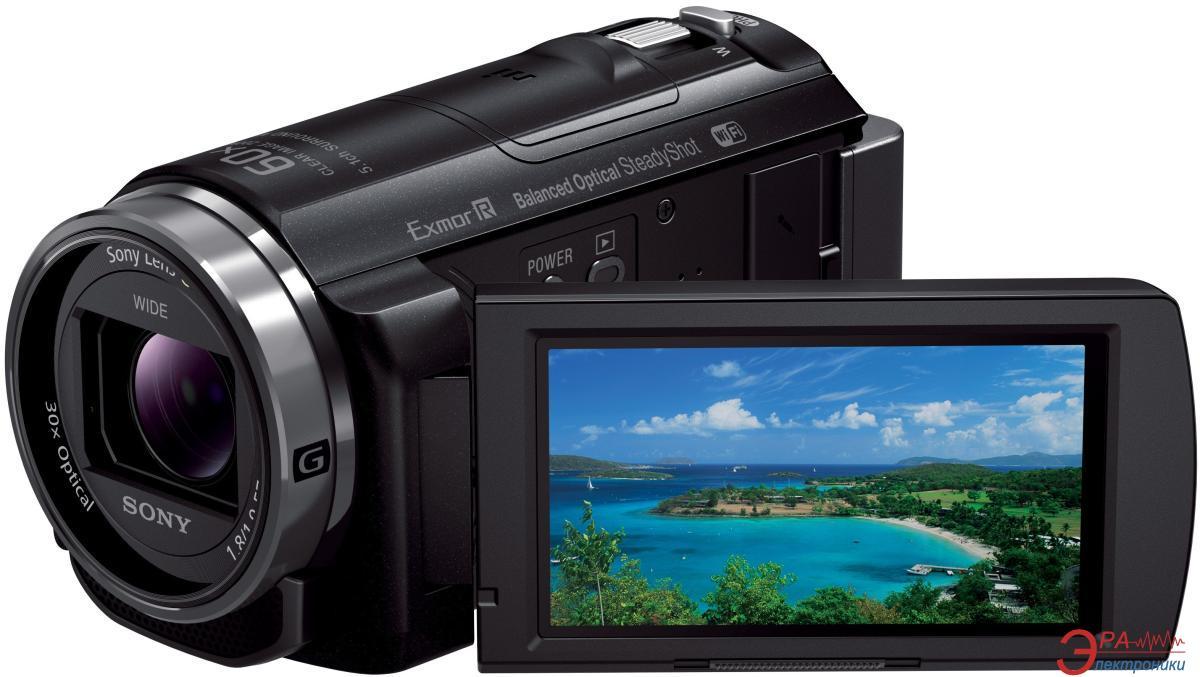 Цифровая видеокамера Sony HDR-CX530 Black (HDRCX530EB.CEL)