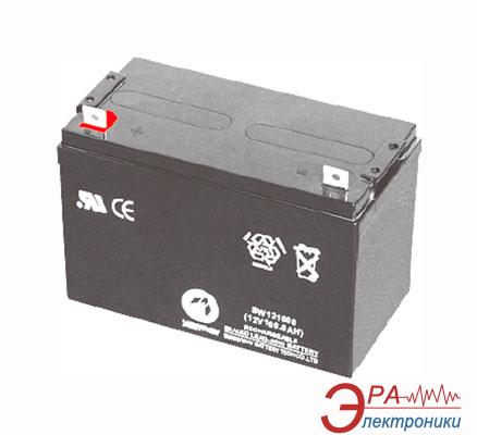 Аккумуляторная батарея X-Digital SPb 12-100