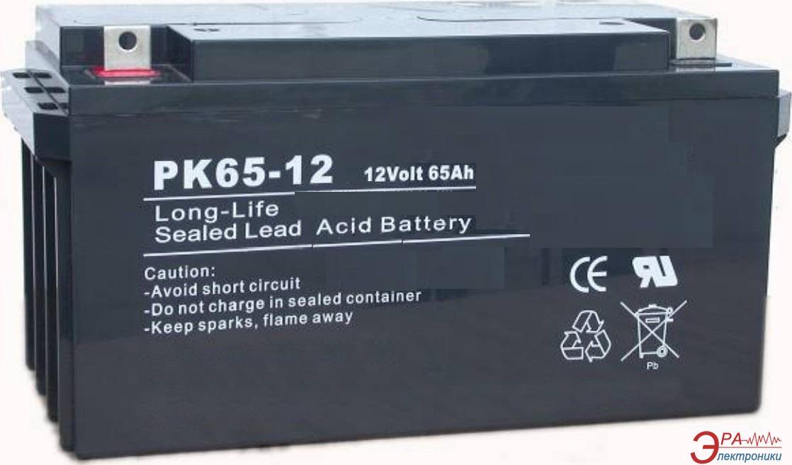 Аккумуляторная батарея PrologiX PK65-12