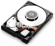 Винчестер для сервера HDD SATA II IBM 43W7626 (43W7626)