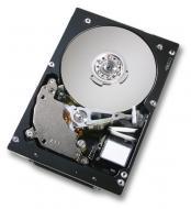 Винчестер для сервера HDD SAS IBM SlimHSHDD (44W2202)