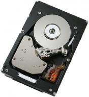 Винчестер для сервера HDD SAS IBM 00W1160 (00W1160)