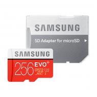 Карта памяти Samsung 256GB microSD Class 10 UHS-I EVO PLUS (MB-MC256DA/RU)