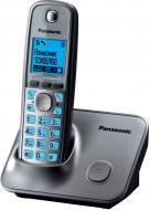 Радиотелефон Panasonic KX-TG6611UAM Metallic