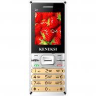 Мобильный телефон Keneksi Q4 Dual Sim Gold (4623720446857)