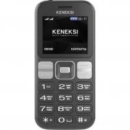 Мобильный телефон Keneksi T2 Dual Sim Black (4680287512814)
