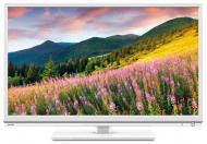 LED Телевизор 23.6 Toshiba 24W1534DG